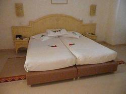 hotel hôtel la palmeraie tozeur
